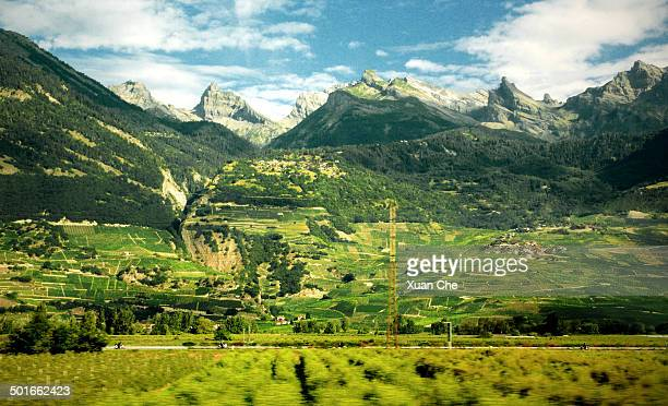 alps and vineyards in valais, switzerland - xuan che stock pictures, royalty-free photos & images