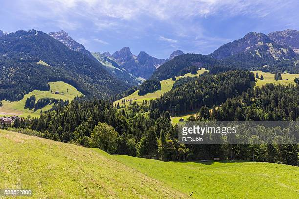 Alps during summer