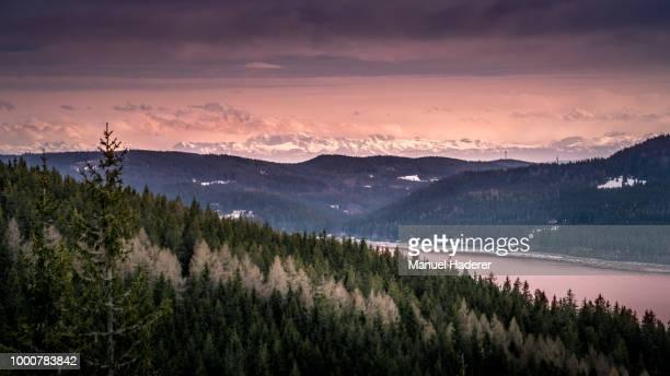 alps in the distance iv - wildnis stock-fotos und bilder