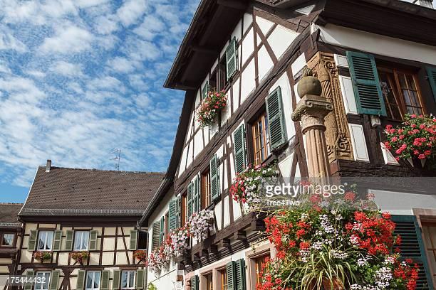 アルザス:絵のように美しいハーフティンバー様式の家の花