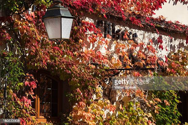 alsace region, haut-rhin, town detail - haut rhin stock pictures, royalty-free photos & images