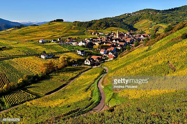 Alsace Wine Route, France