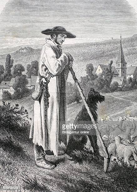 Alsatian shepherd france historic illustration 1877