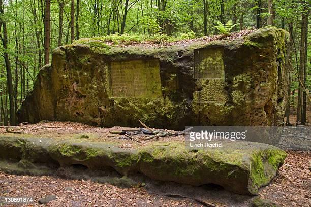 altar stone at the stimmersdorfer weg trail, saxon switzerland, elbsandsteingebirge elbe sandstone mountains, saxony, germany, europe - weg bildbanksfoton och bilder