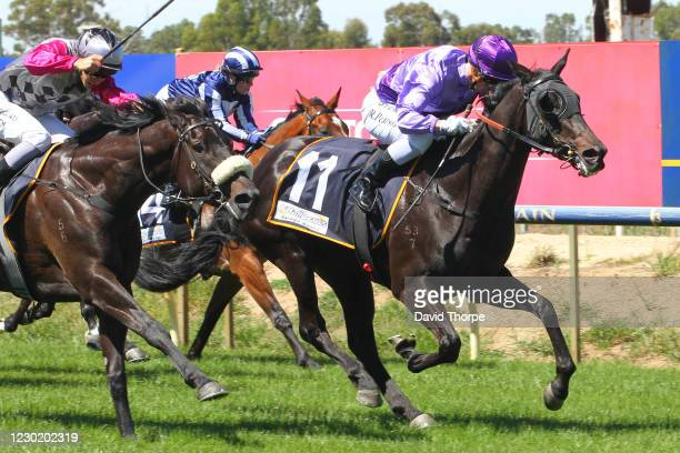 Alternate Reality ridden by Rose Pearson wins the Ken King Thoroughbreds Maiden Plate at Benalla Racecourse on December 19, 2020 in Benalla,...