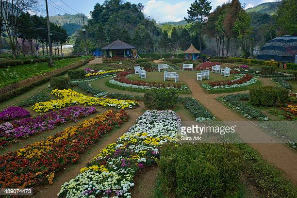 CONTENT] Although situated in the far north of Chiang Mai and tourists have to go up and down mountain after mountain Doi Ang Khang still maintains...