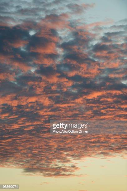 altocumulus clouds at sunset - altocumulus stockfoto's en -beelden