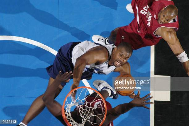 Alton Ford of the Orlando Magic reaches for a rebound during the 2003 Pepsi Pro Summer League game against the Cleveland Cavaliers at TD Waterhouse...