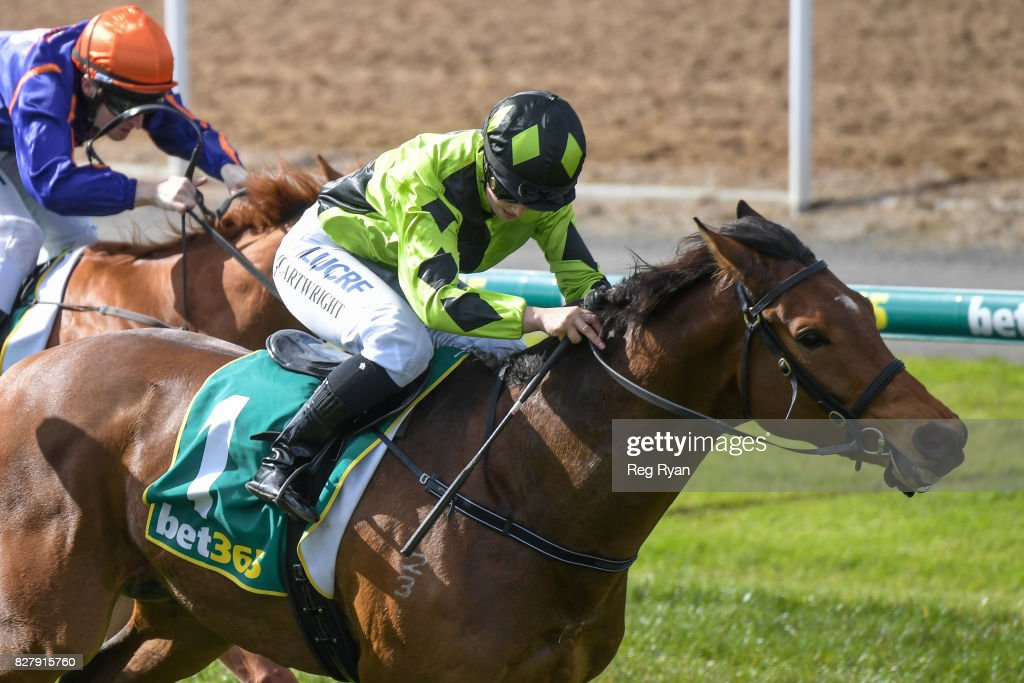 Geelong Homes Maiden Plate : News Photo
