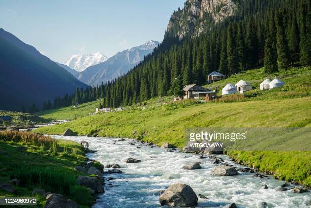 altyn arashan is a beautiful alpine forest in south-east of issky kul lake, kyrgyzstan - kyrgyzstan stock pictures, royalty-free photos & images
