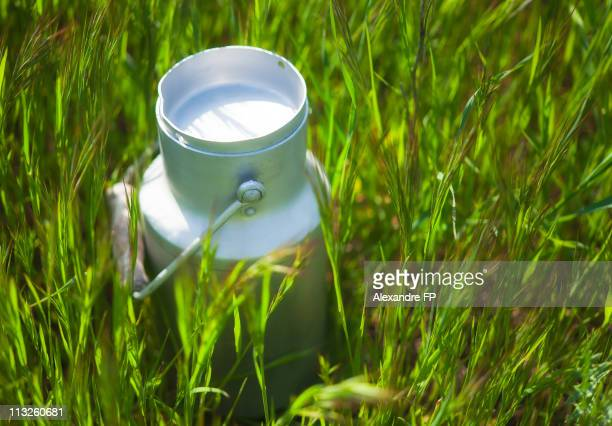 Aluminium Milk Churn in the Grass