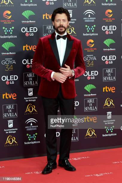 Alvaro Morte attends the 34th 'Goya' Cinema Awards 2020 Red Carpet photocall at Jose Maria Martin Carpena Sports Palace in Malaga Spain on Jan 25 2020