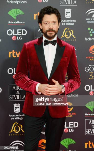 Alvaro Morte attends the Goya Cinema Awards 2020 during the 34th edition of the Goya Cinema Awards at Jose Maria Martin Carpena Sports Palace on...