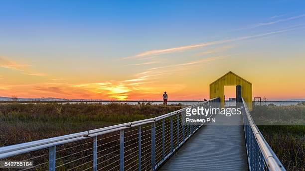 alviso marina county park - san jose california stock pictures, royalty-free photos & images