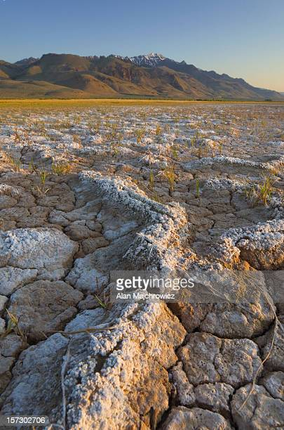 alvord desert oregon - steens mountain stock pictures, royalty-free photos & images
