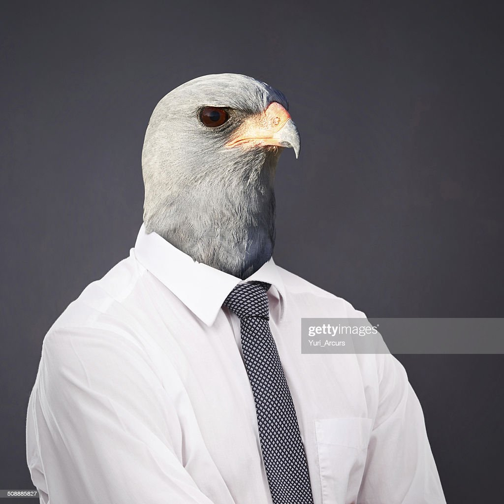 Always stay on top of the business food chain : Stock Photo