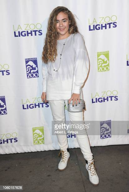 Alyssa de Boisblanc attends the LA Zoo Lights Special Preview/VIP Night held at Los Angeles Zoo on November 10 2018 in Los Angeles California