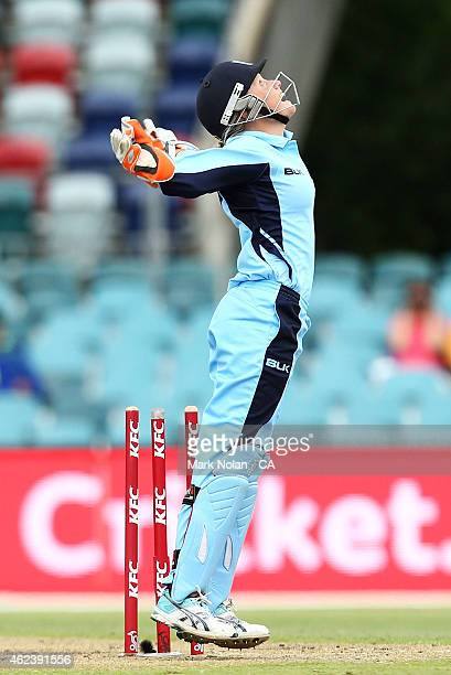 Alyssa Healy of NSW celebrates running out Molly Strano of Victoria and winning the Women's Twenty20 final match between New South Wales and Victoria...