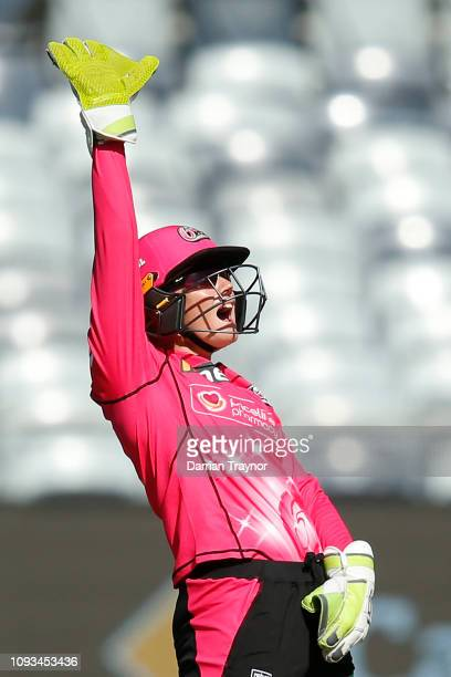 Alyssa Healy of the the Sixers appeals to the umpire during the Women's Big Bash League match between the Melbourne Renegades and the Sydney Sixers...