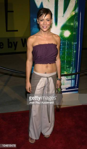Alyssa Milano during The WB Network's 2002 Summer Party at Renaissance Hollywood Hotel in Hollywood California United States