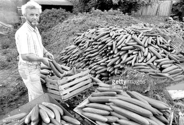 Am muß dieser Gärtner aus Dresden Kaditz seine ganze Gurkenernte auf den Komposthaufen werfen Mit der Währungsunion am als alle DDRBürger die DM in...