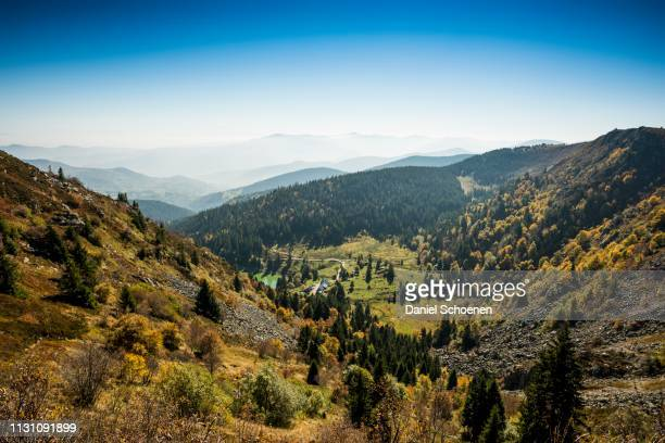 am hohneck, col de la schlucht, vosges, alsace-lorraine, france - lorraine stock pictures, royalty-free photos & images
