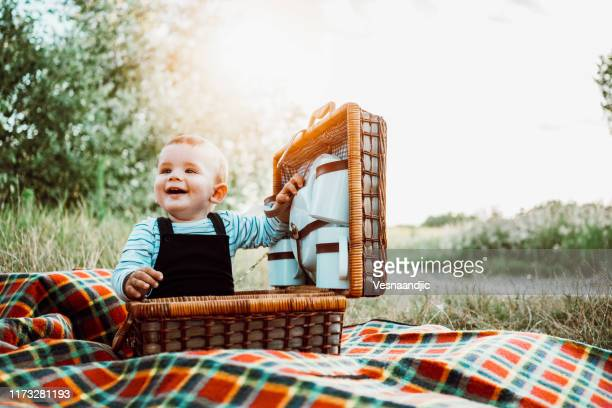 i am ready for picnic - hamper stock pictures, royalty-free photos & images
