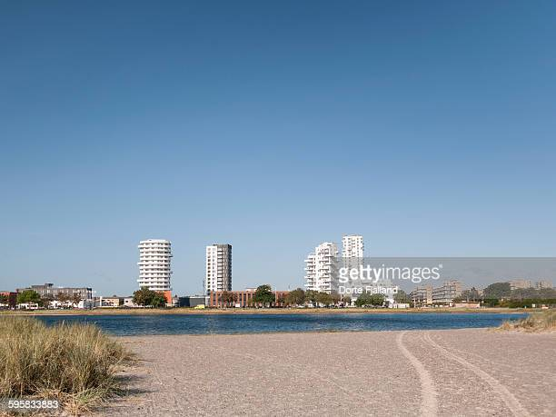 amager strandpark - dorte fjalland stock pictures, royalty-free photos & images