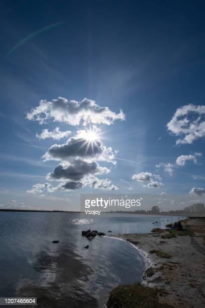 amager strandpark water's edge i, copenhagen, denmark - vsojoy stock pictures, royalty-free photos & images