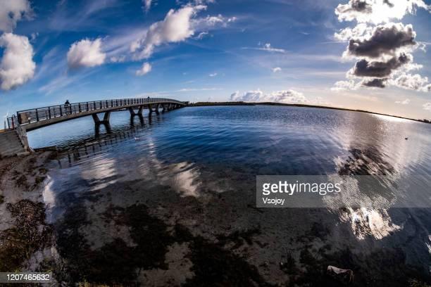 amager strandpark water's edge ii, copenhagen, denmark - vsojoy stock pictures, royalty-free photos & images