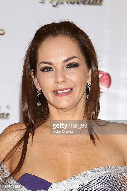 Amairani attends the Premios Tv y Novelas 2014 at Televisa Santa Fe on March 23 2014 in Mexico City Mexico