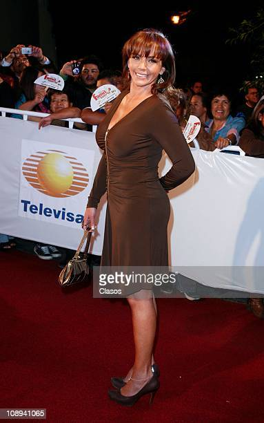 Amairani poses for photographers during the presentation of the soap opera Una Familia Con Surte on February 8 2011 in Mexico City Mexico