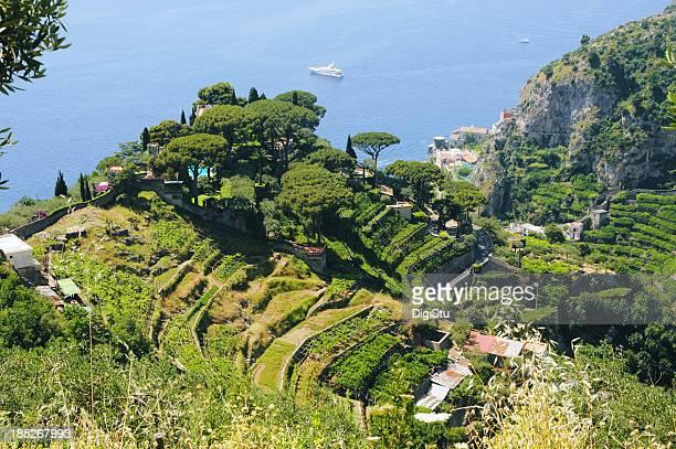 Las terrazas de la costa de Amalfi