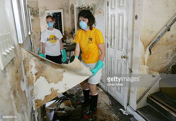 Amanda Barrett 18yearsold watches her mother Eve Barrett peel a moldcovered layer of paint off a wall as the family sees what is left of their home...