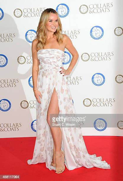 Amanda Holden attends the annual Collars Coats Gala Ball in aid of The Battersea Dogs Cats home at Battersea Evolution on October 30 2014 in London...