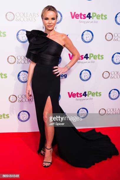 Amanda Holden attends the Collars and Coats Ball 2017 at Battersea Evolution on November 2 2017 in London England