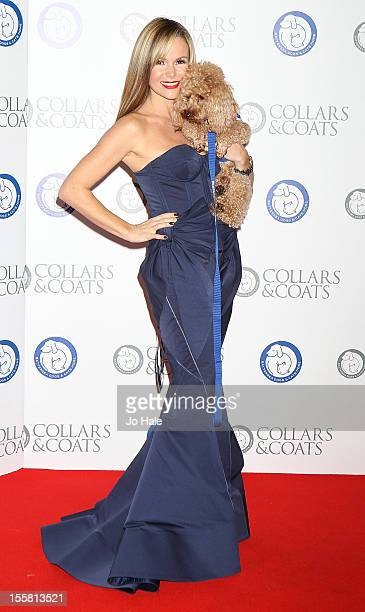 Amanda Holden attends the Collars Coats Gala Ball at Battersea Evolution on November 8 2012 in London England