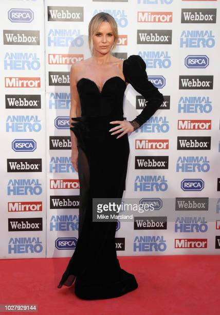 Amanda Holden attends the Daily Mirror RSPCA Animal Hero awards at Grosvenor House on September 6 2018 in London England