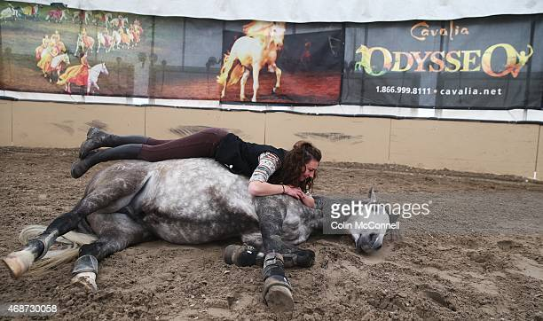 TORONTO ON MARCH 30 Amanda Orlowski24 yrs has fun with 7 yr old gelding Diamante A behind the scenes feature on Odysseothe new version of the...