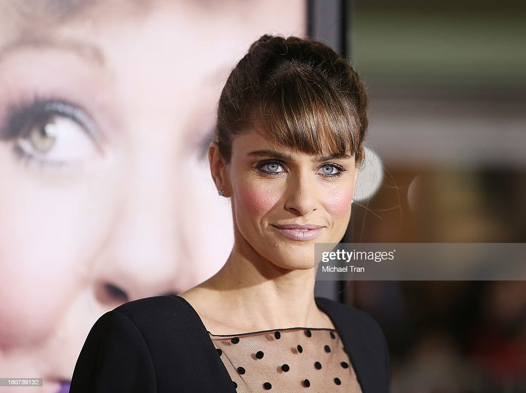 Amanda Peet arrives at the Los Angeles premiere of 'Identity Thief' held at Mann Village Theatre on February 4, 2013 in Westwood, California.