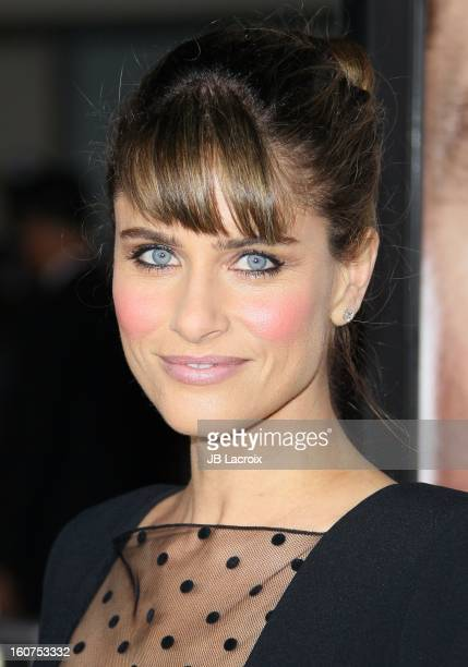 Amanda Peet attends the 'Identity Thief' Premiere held at Mann Village Theatre on February 4, 2013 in Westwood, California.
