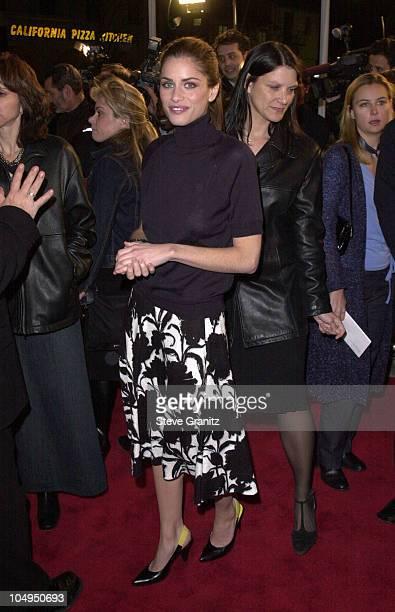 Amanda Peet during Saving Silverman Premiere at Mann Village Theater in Westwood, California, United States.