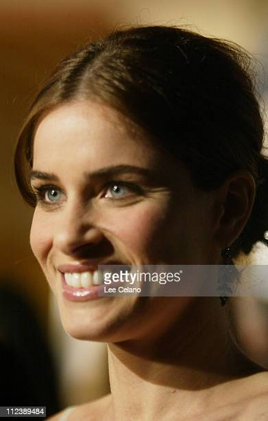 Amanda Peet during Something's Gotta Give Los Angeles Premiere Red Carpet at Mann Village Westwood in Westwood California United States