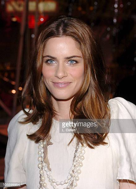 Amanda Peet during The Wedding Date Los Angeles Premiere Red Carpet at Universal Studios in Hollywood California United States