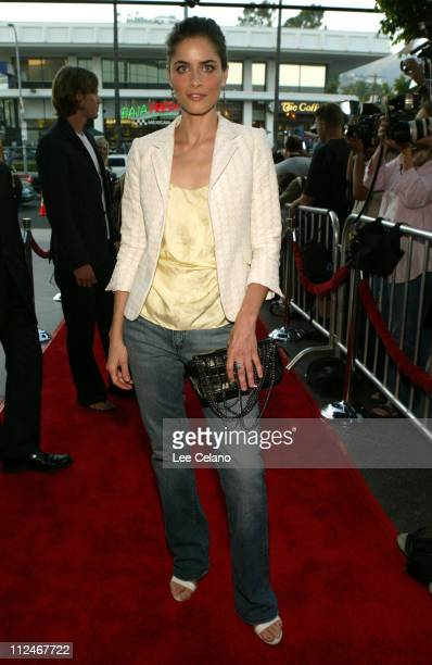 Amanda Peet during We Don't Live Here Anymore Los Angeles Premiere Red Carpet at Director's Guild of America Theatre in Hollywood California United...