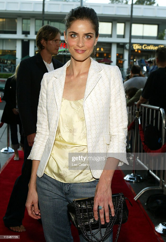Amanda Peet during 'We Don't Live Here Anymore' Los Angeles Premiere - Red Carpet at Director's Guild of America Theatre in Hollywood, California, United States.