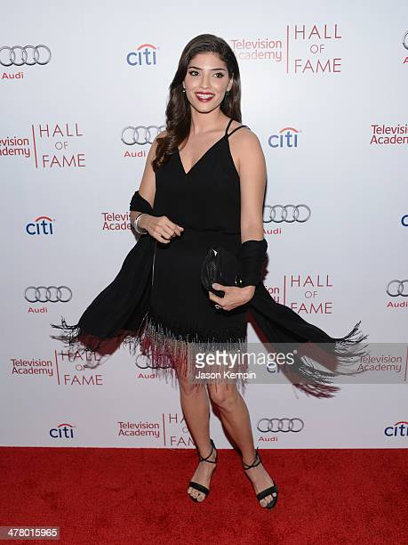 Amanda Setton attends The Television Academy's 23rd Hall Of Fame Induction Gala at Regent Beverly Wilshire Hotel on March 11 2014 in Beverly Hills...