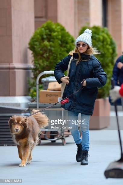 Amanda Seyfried and her dog Finn are seen in Manhattan on March 12 2019 in New York City