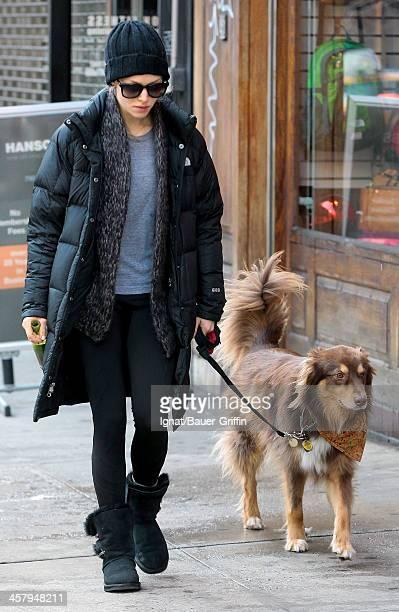 Amanda Seyfried is seen as she walks her dog Finn on December 19 2013 in New York City