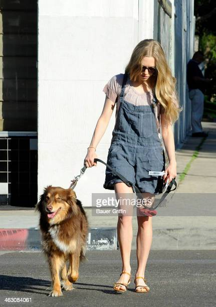 Amanda Seyfried is seen running errands in Hollywood with her dog Finn on January 16 2014 in Los Angeles California